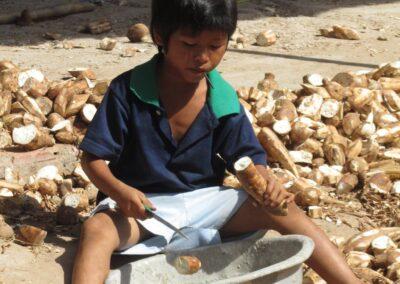 Épluchage et découpe des racines de manioc