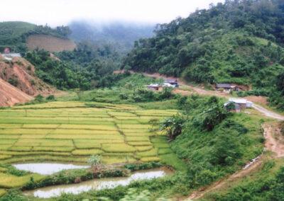 Petite rizière de montagne à Kontum